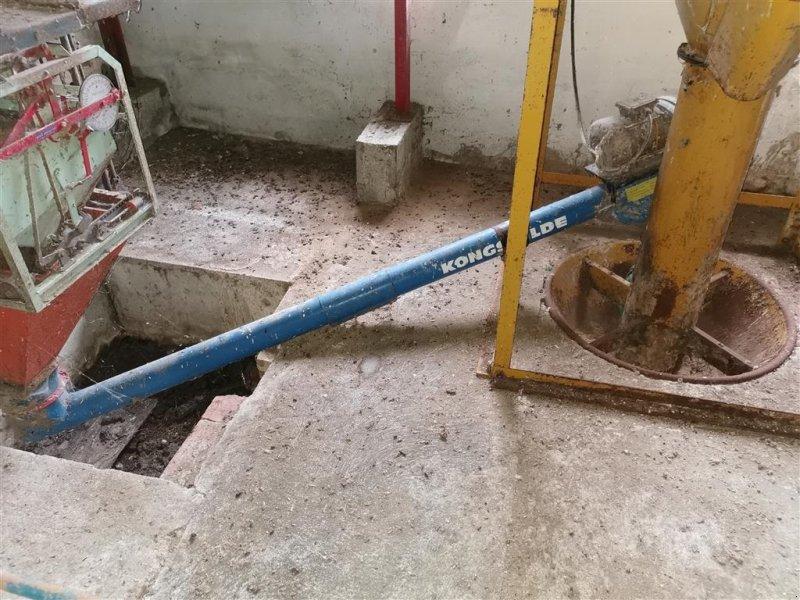 Sonstige Getreidelagertechnik типа Kongskilde 102 mm. kornsnegle 2 meter, Gebrauchtmaschine в Egtved (Фотография 1)