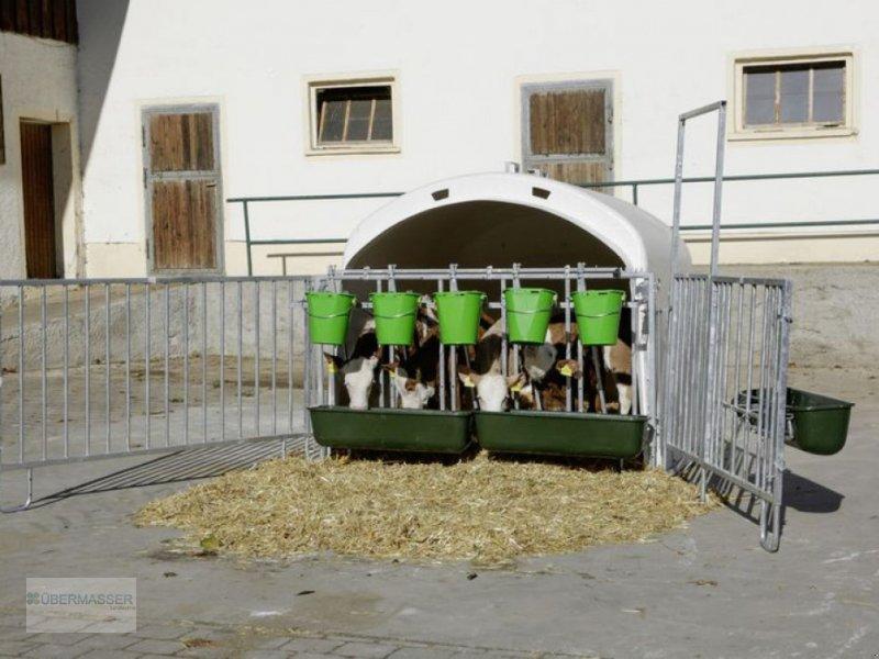 Sonstige Hoftechnik типа Kerbl CalfHouse Premium XL mit Umzäunung, Neumaschine в Freistadt (Фотография 1)