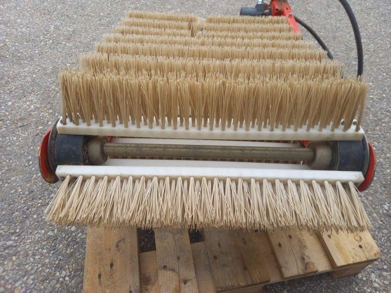 Sonstige Kartoffeltechnik a típus Grimme SE 85-55 Bürstenband für Schwadaufnahme, Gebrauchtmaschine ekkor: Harmannsdorf-Rückersdorf (Kép 1)