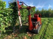 Sonstige Obsttechnik & Weinbautechnik typu Fehrenbach  Laubschneider L-5/2, Gebrauchtmaschine w Wilchingen