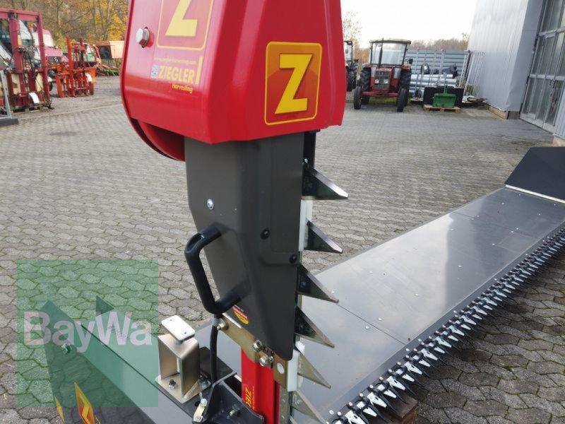 Sonstiges Mähdrescherzubehör des Typs Ziegler RAPSVORSATZ, Gebrauchtmaschine in Manching (Bild 4)