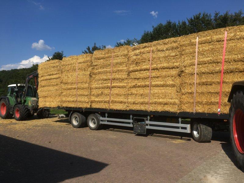 Sonstiges Traktorzubehör типа Sonstige Sonstige 800kg, Gebrauchtmaschine в Möttingen (Фотография 1)
