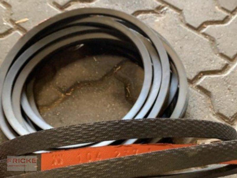 Sonstiges des Typs CLAAS Keilriemen 104.237.1 für Lexion, Gebrauchtmaschine in Demmin (Bild 1)