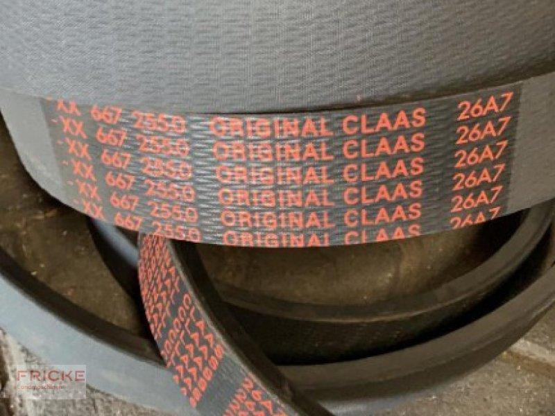Sonstiges des Typs CLAAS Keilriemen 667.255.0 für Lexion 480, Gebrauchtmaschine in Demmin (Bild 1)