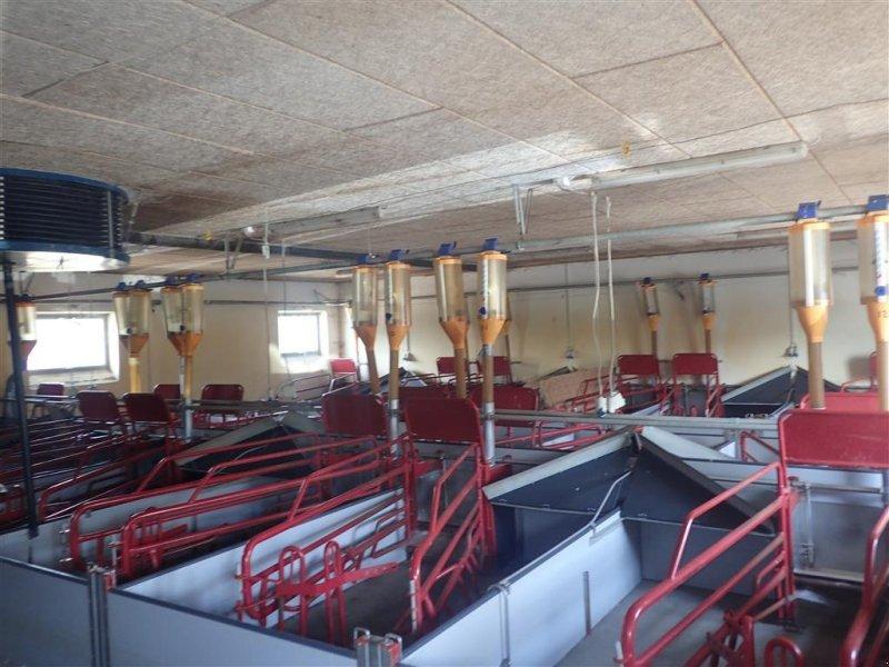 Sonstiges типа Skiold Foderanlæg med foderkasser, Gebrauchtmaschine в Egtved (Фотография 1)