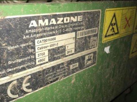 Spatenrollegge des Typs Amazone Catros+ 6001-2, Gebrauchtmaschine in Lohe-Rickelshof (Bild 6)