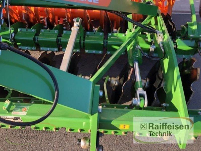 Spatenrollegge des Typs Amazone Catros XL 3003, Vorführmaschine in Frankenberg/Eder (Bild 5)