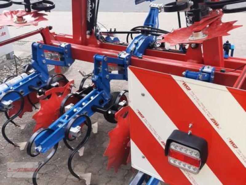 Striegel des Typs Hatzenbichler 6 Reihig / 75cm Maishackmaschine  mit Heckparallelogramme, Neumaschine in Tewel (Bild 8)