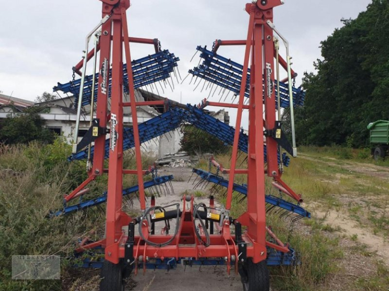 Striegeltechnik & Hacktechnik des Typs Hatzenbichler Federzahnhackegge 12m, Gebrauchtmaschine in Pragsdorf (Bild 1)