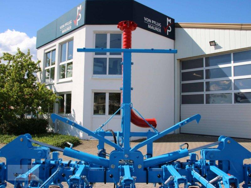 Striegeltechnik & Hacktechnik tip Monosem Multicrop, Neumaschine in Kappel-Grafenhausen (Poză 7)