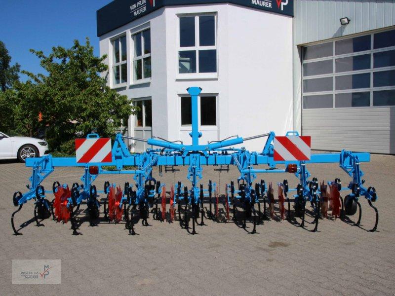Striegeltechnik & Hacktechnik tip Monosem SCD, Neumaschine in Kappel-Grafenhausen (Poză 2)