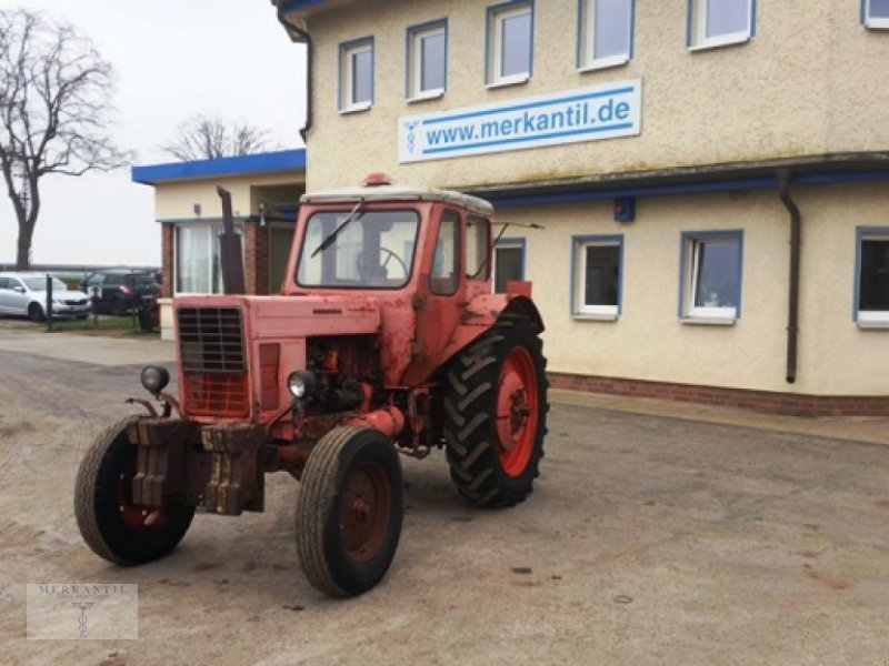 Traktor typu Belarus MTS 50, Gebrauchtmaschine w Pragsdorf (Zdjęcie 1)