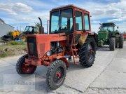 Traktor typu Belarus MTS 570 - 80 PS, Gebrauchtmaschine w Prenzlau