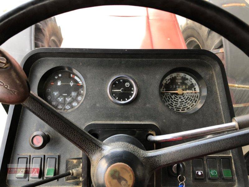 Traktor des Typs Case IH 1056 XLA, Gebrauchtmaschine in Epfendorf (Bild 6)