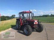Traktor des Typs Case IH 840 + Frontlader, Gebrauchtmaschine in Rhede / Brual