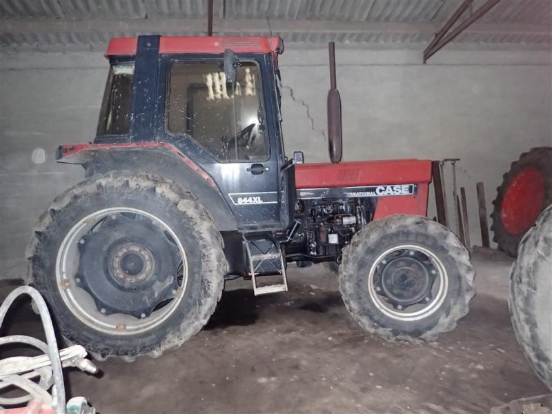Traktor des Typs Case IH 844 XL, Gebrauchtmaschine in Egtved (Bild 1)
