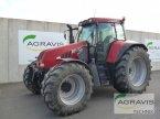 Traktor des Typs Case IH CVX 170 in Melle-Wellingholzhau