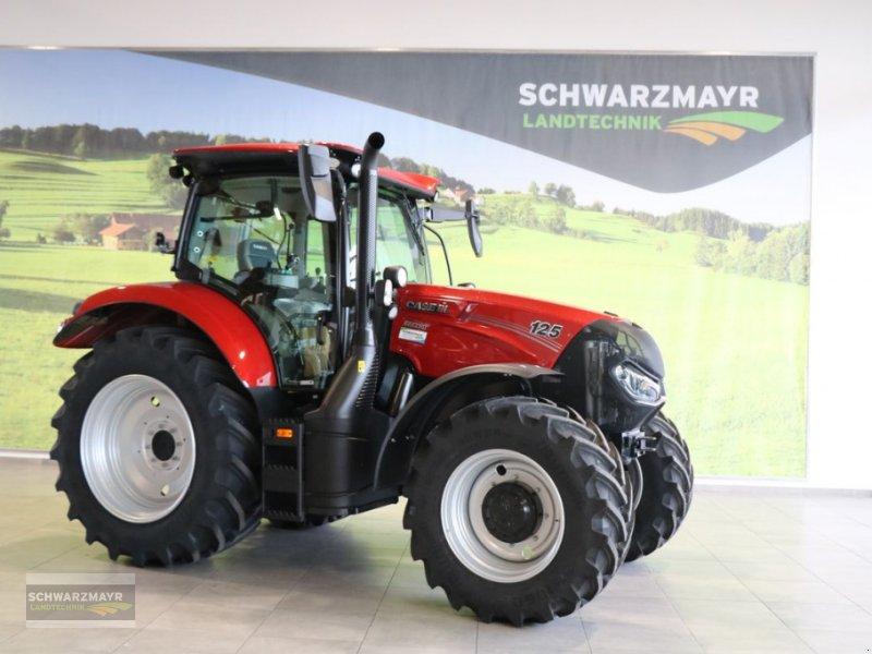 Traktor des Typs Case IH Maxxum 125 CVX, Neumaschine in Gampern (Bild 1)