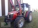 Traktor des Typs Case IH MF 4709 in Triebes