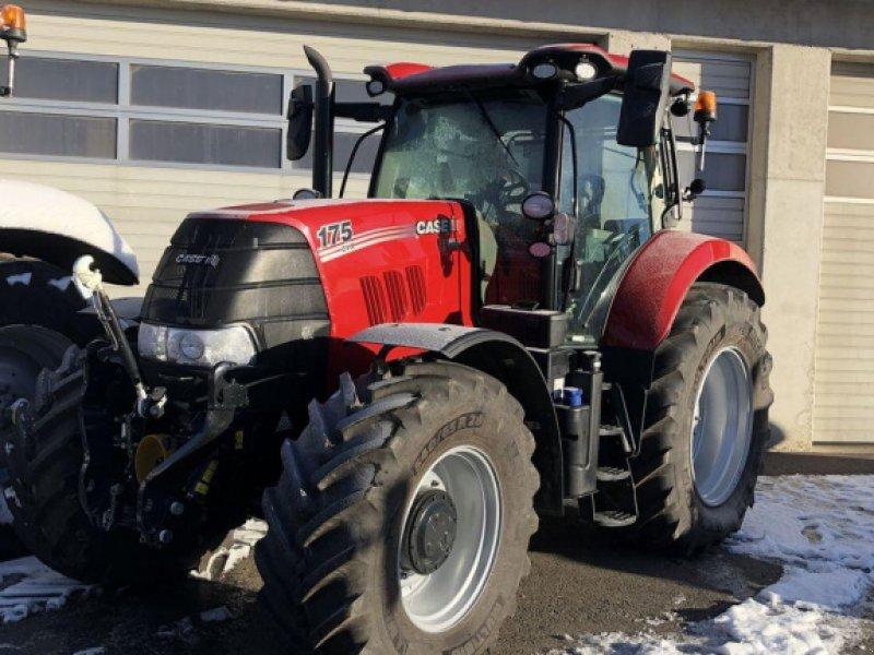 Traktor des Typs Case IH Puma 175 CVX, Vorführmaschine in Traberg (Bild 1)
