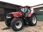 Traktor des Typs Case IH Puma 230 CVX in Annaburg