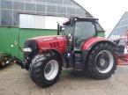 Traktor a típus Case IH PUMA 240 CVX ekkor: Brandenburg - Liebenwalde