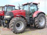 Traktor типа Case IH Puma CVX 225 Komfort EHR, Gebrauchtmaschine в Elsnig