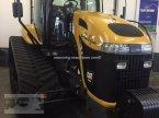 Traktor des Typs CHALLENGER MT 765 B PTO in Gescher