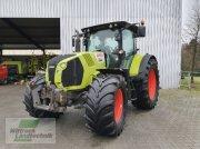 Traktor типа CLAAS Arion 640 CIS, Gebrauchtmaschine в Georgsheil