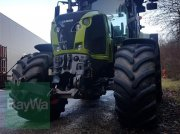 CLAAS Axion 810 C-MATIC Traktor