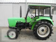 Traktor des Typs Deutz-Fahr D 3607, Gebrauchtmaschine in Ottensheim