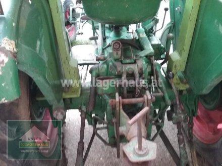 Traktor des Typs Deutz-Fahr D 40.2, Gebrauchtmaschine in Wels (Bild 2)