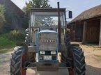 Traktor des Typs Eicher 3105 A in Falkenberg