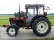 Traktor des Typs Fiat 45-66 S, Gebrauchtmaschine in Tarsdorf