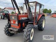 Traktor des Typs Fiat 55-66 DT, Gebrauchtmaschine in Amöneburg - Roßdorf