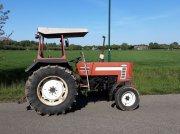 Traktor типа Fiat 55   66, Gebrauchtmaschine в Breukelen