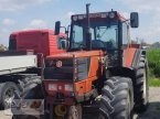 Traktor des Typs Fiatagri F 130 DT в Bad Waldsee Mennisweiler