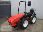 Traktor des Typs Goldoni Base 20 SN in Borken