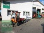 Traktor des Typs Holder C 240   TYP 202  #271 in Schönau b.Tuntenhaus
