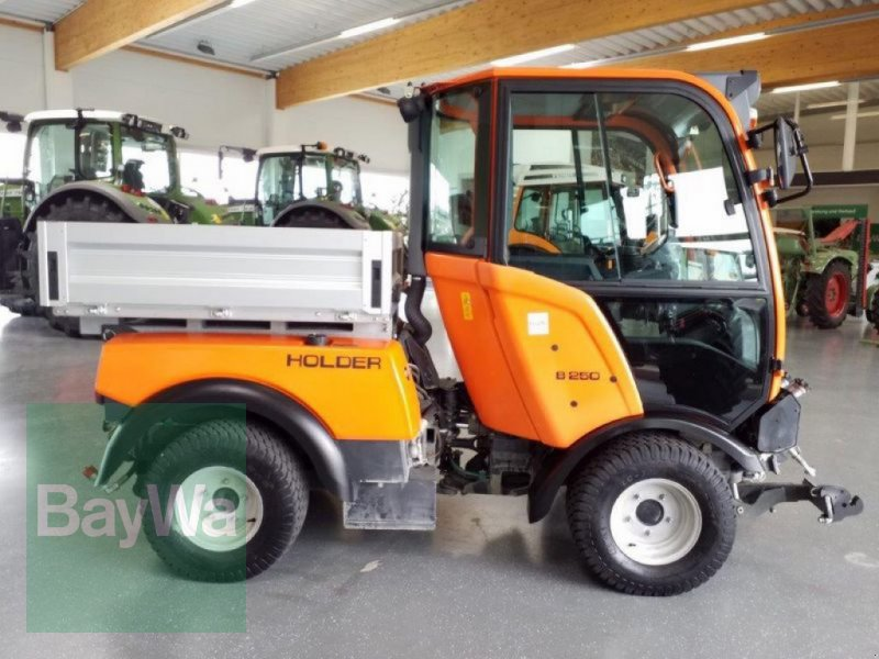 Traktor des Typs Holder GEBR. B250 (T), Gebrauchtmaschine in Bamberg (Bild 5)