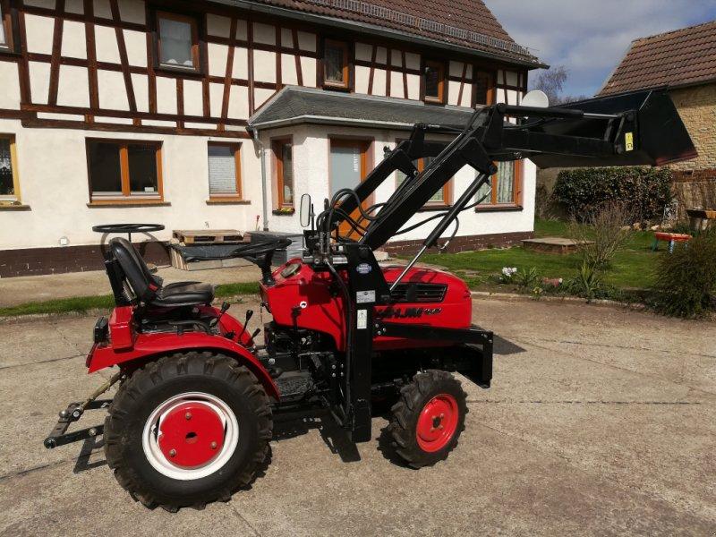 Traktor des Typs Jinma 164 Y, Gebrauchtmaschine in Blankenhain (Bild 1)