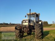 Traktor типа Lamborghini 874 90 Turbo GRAND PRIX, Gebrauchtmaschine в Kematen