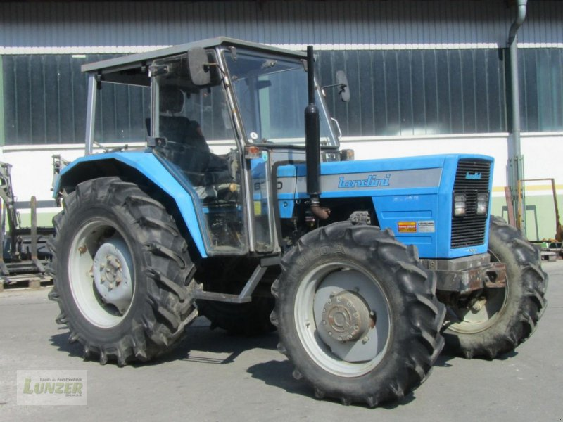Traktor des Typs Landini 6500, Gebrauchtmaschine in Kaumberg (Bild 1)