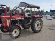 Traktor des Typs Lindner BF 350 SN, Gebrauchtmaschine in Tarsdorf