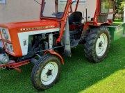 Traktor des Typs Lindner BF35 OS, Gebrauchtmaschine in Globasnitz