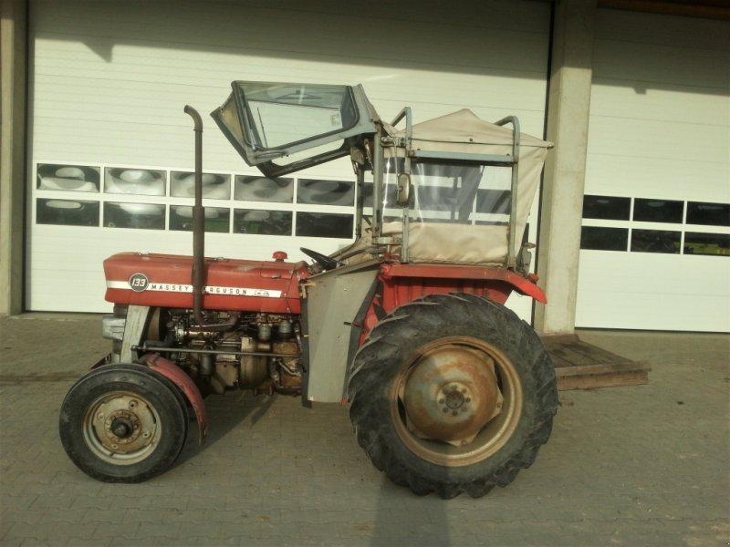 Traktor des Typs Massey Ferguson 133, Gebrauchtmaschine in Falkenberg (Bild 1)