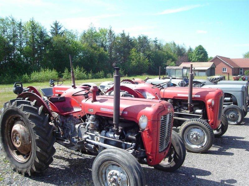 Traktor типа Massey Ferguson 135, Gebrauchtmaschine в Ejstrupholm (Фотография 6)