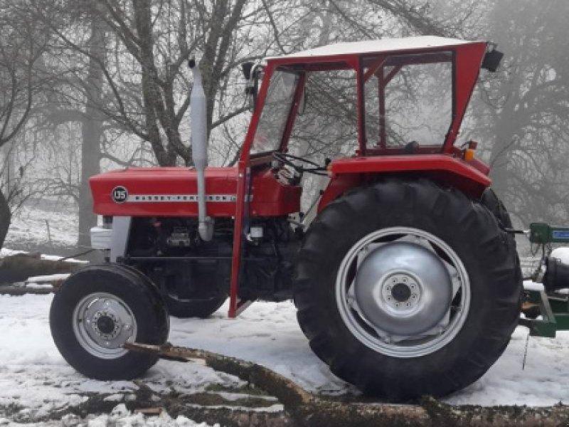 Traktor des Typs Massey Ferguson 135, Gebrauchtmaschine in Völkermarkt (Bild 1)