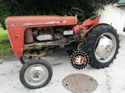 Traktor des Typs Massey Ferguson 21, Gebrauchtmaschine in Stainach