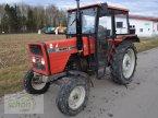 Traktor des Typs Massey Ferguson 233 mit Servolenkung und niederer Bauhöhe in Burgrieden